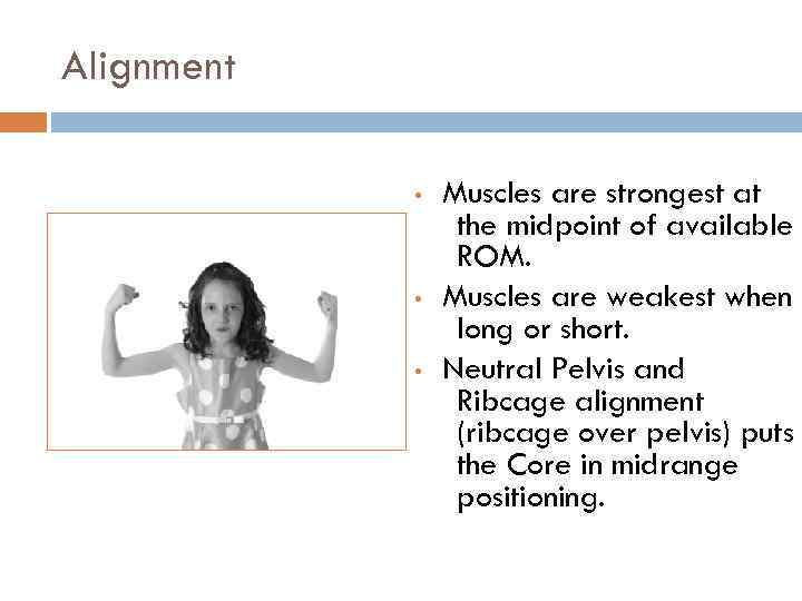 Alignment • • • Muscles are strongest at the midpoint of available ROM. Muscles