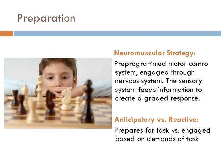Preparation Neuromuscular Strategy: Preprogrammed motor control system, engaged through nervous system. The sensory system