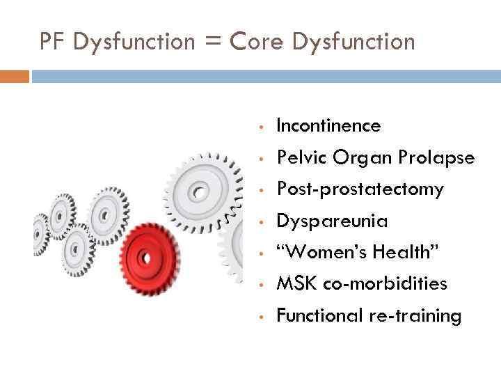 "PF Dysfunction = Core Dysfunction • • Incontinence Pelvic Organ Prolapse Post-prostatectomy Dyspareunia ""Women's"
