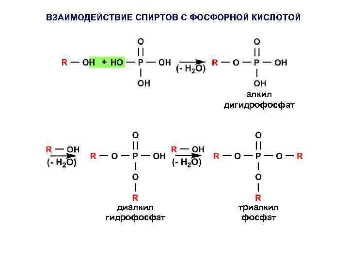 ВЗАИМОДЕЙСТВИЕ СПИРТОВ С ФОСФОРНОЙ КИСЛОТОЙ алкил дигидрофосфат диалкил гидрофосфат триалкил фосфат