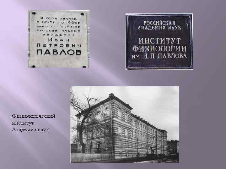 Физиологический институт Академии наук