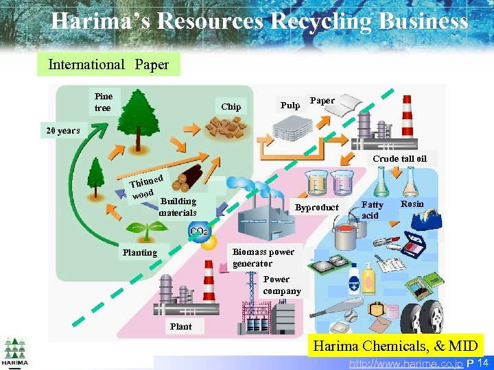 Harima's Resources Recycling Business International Paper Pine tree Chip Pulp Paper 20 years Crude tall