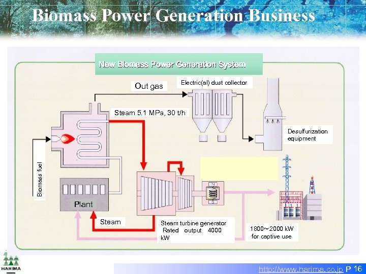 Biomass Power Generation Business New Biomass Power Generation System Out gas Electric(al) dust collector