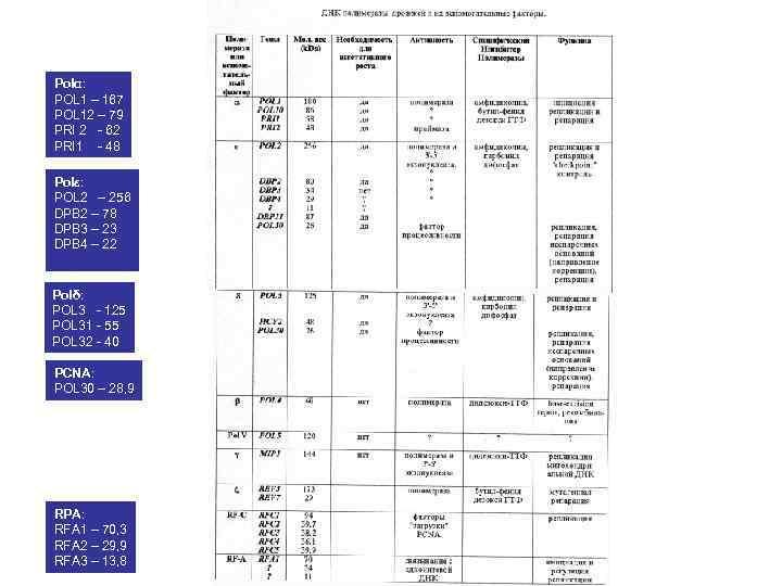 Polα: POL 1 – 167 POL 12 – 79 PRI 2 - 62 PRI
