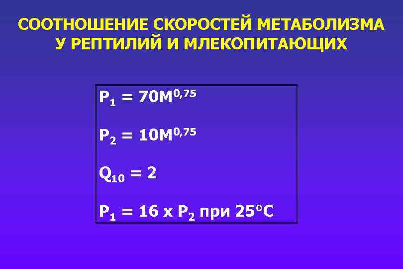 СООТНОШЕНИЕ СКОРОСТЕЙ МЕТАБОЛИЗМА У РЕПТИЛИЙ И МЛЕКОПИТАЮЩИХ P 1 = 70 M 0, 75
