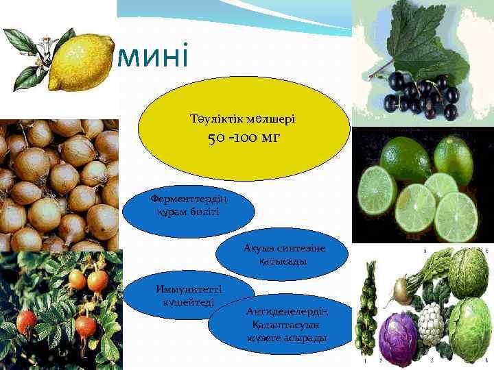 С витамині Тәуліктік мөлшері 50 -100 мг Ферменттердің құрам бөлігі Ақуыз синтезіне қатысады Иммунитетті