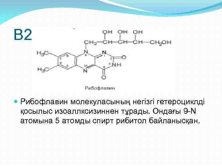 В 2 – рибофлавин Рибофлавин молекуласының негізгі гетероциклді қосылыс изоаллксизиннен тұрады. Ондағы 9 -N
