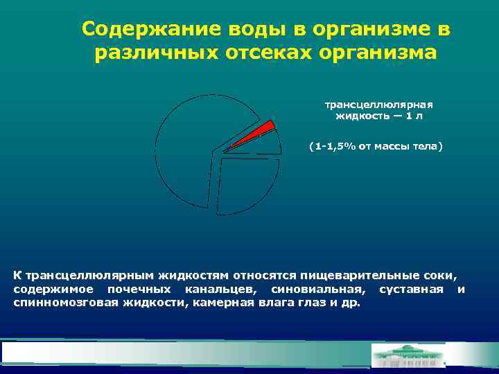Содержание воды в организме в различных отсеках организма трансцеллюлярная жидкость — 1 л (1