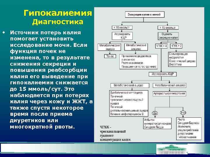 Гипокалиемия Диагностика • Источник потерь калия помогает установить исследование мочи. Если функция почек не