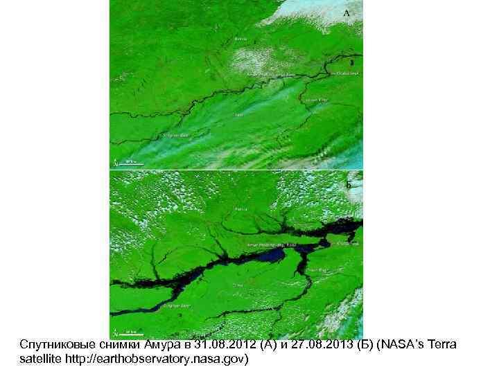 Спутниковые снимки Амура в 31. 08. 2012 (A) и 27. 08. 2013 (Б) (NASA's