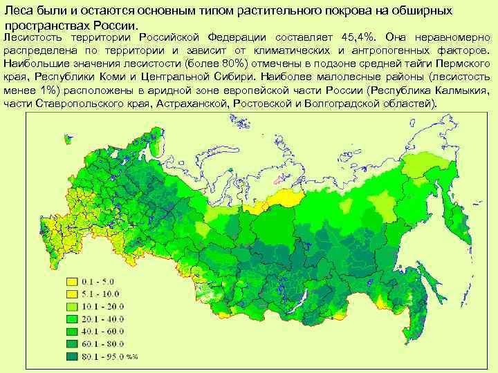 Леса были и остаются основным типом растительного покрова на обширных пространствах России. Лесистость территории