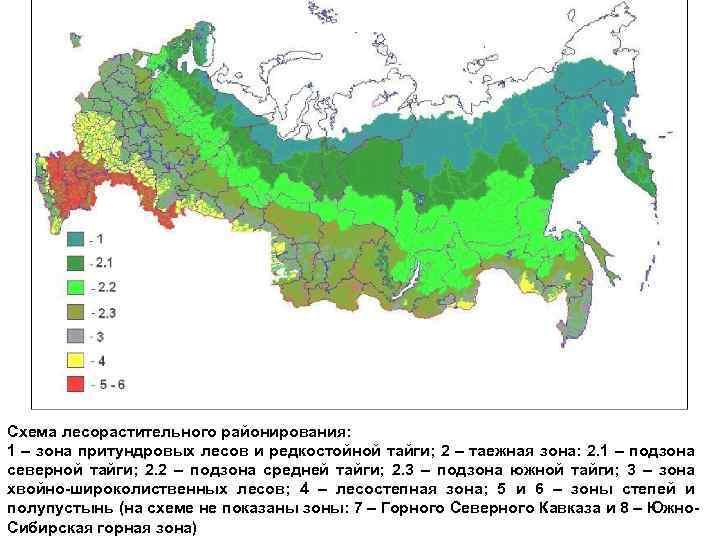 Схема лесорастительного районирования: 1 – зона притундровых лесов и редкостойной тайги; 2 – таежная