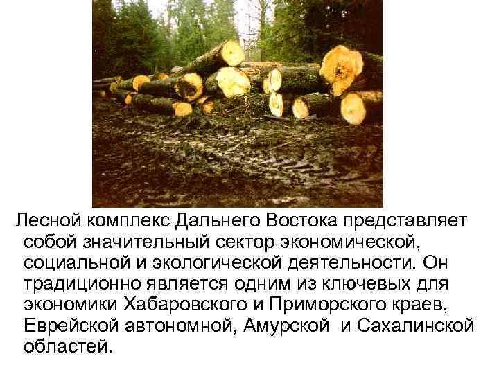 Лесной комплекс Дальнего Востока представляет собой значительный сектор экономической, социальной и экологической деятельности.