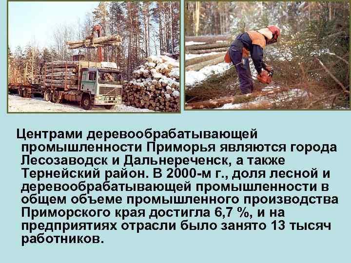 Центрами деревообрабатывающей промышленности Приморья являются города Лесозаводск и Дальнереченск, а также Тернейский район.