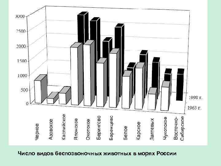 Число видов беспозвоночных животных в морях России