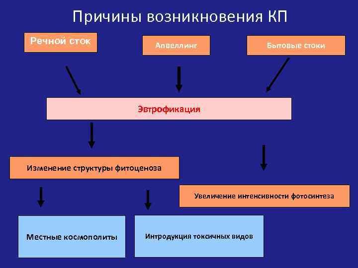 Причины возникновения КП Речной сток Апвеллинг Бытовые стоки Эвтрофикация Изменение структуры фитоценоза Увеличение интенсивности