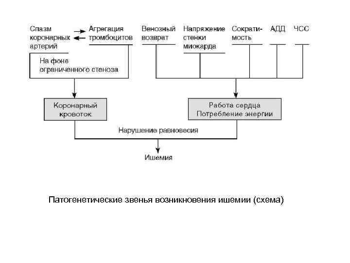 Патогенетические звенья возникновения ишемии (схема)