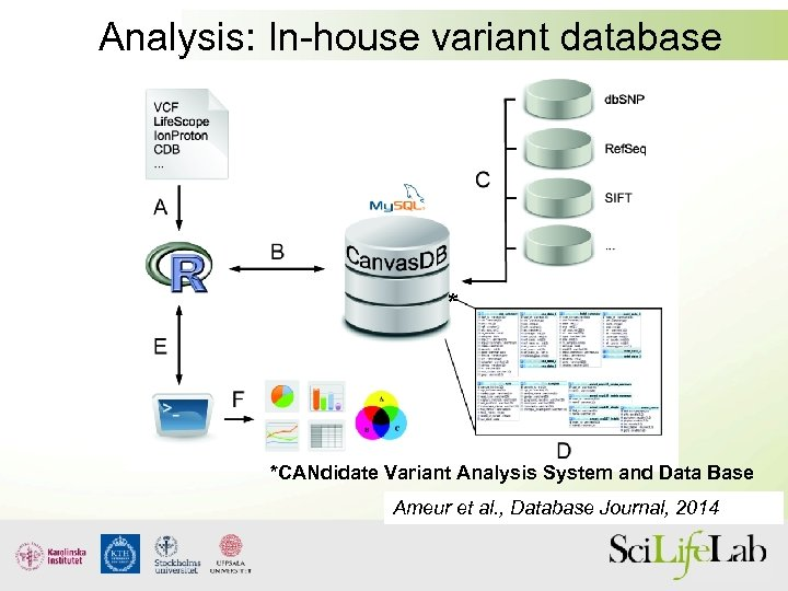 Analysis: In-house variant database * *CANdidate Variant Analysis System and Data Base Ameur et
