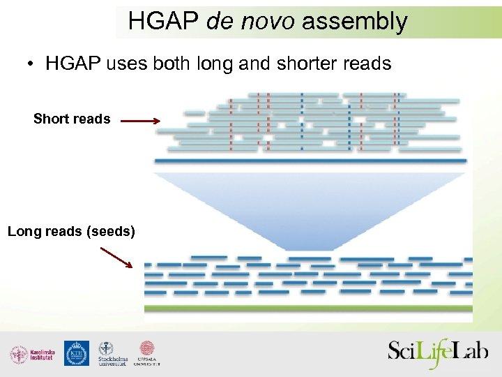HGAP de novo assembly • HGAP uses both long and shorter reads Short reads