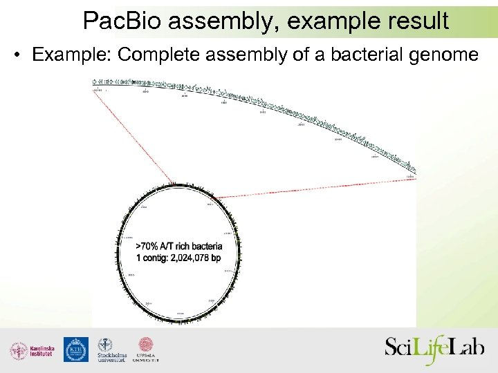 Pac. Bio assembly, example result • Example: Complete assembly of a bacterial genome