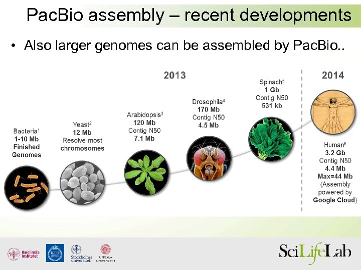 Pac. Bio assembly – recent developments • Also larger genomes can be assembled by