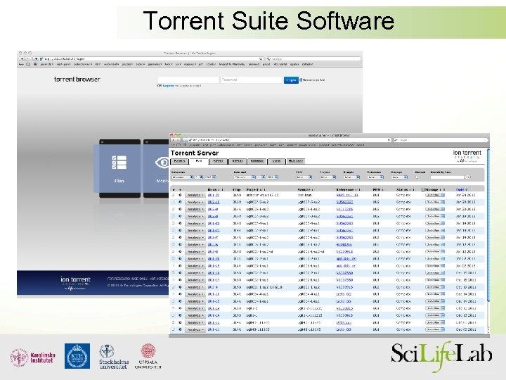 Torrent Suite Software