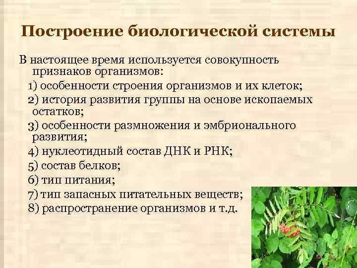 Построение биологической системы В настоящее время используется совокупность признаков организмов: 1) особенности строения организмов