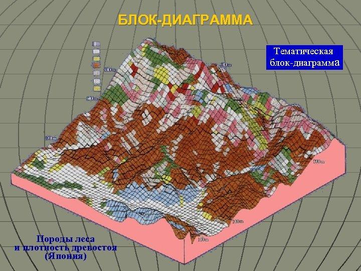 БЛОК-ДИАГРАММА Тематическая блок-диаграмма Породы леса и плотность древостоя (Япония)