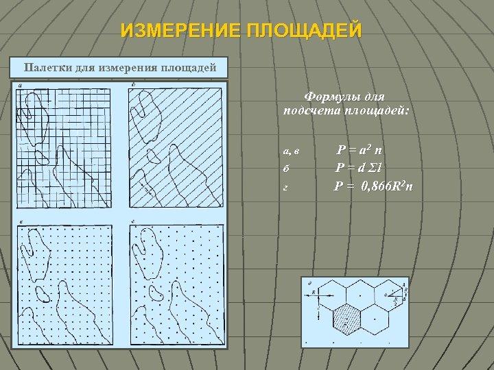 ИЗМЕРЕНИЕ ПЛОЩАДЕЙ Палетки для измерения площадей Формулы для подсчета площадей: а, в б г