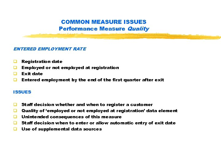 WIA PERFORMANCE MEASURES AND STANDARDS The WIASRD Common