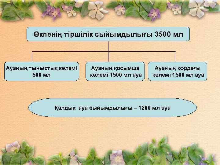 Өкпенің тіршілік сыйымдылығы 3500 мл Ауаның тыныстық көлемі 500 мл Ауаның қосымша көлемі 1500