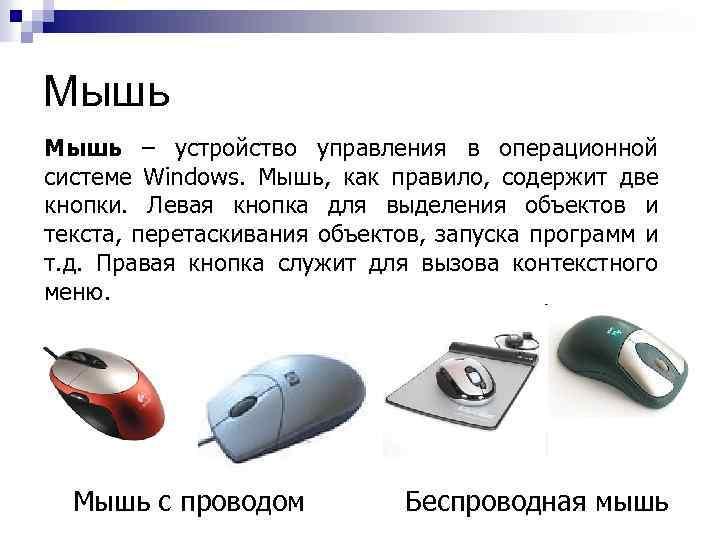 Мышь – устройство управления в операционной системе Windows. Мышь, как правило, содержит две кнопки.