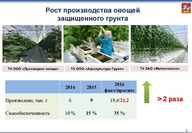 Рост производства овощей защищенного грунта ТК ООО «Луховицкие овощи» ТК ООО «Агрокультура Групп» 2015