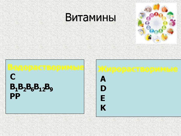 Витамины Водорастворимые С B 1 B 2 B 6 B 12 B 9 PP