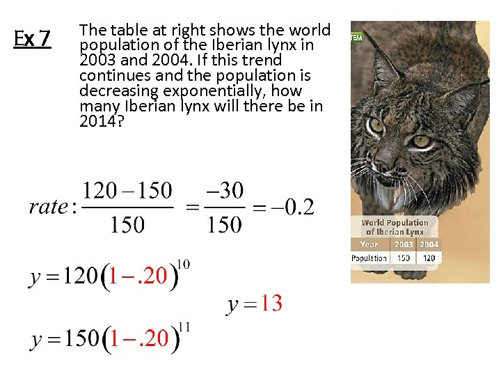Ex 7 The table at right shows the world population of the Iberian lynx