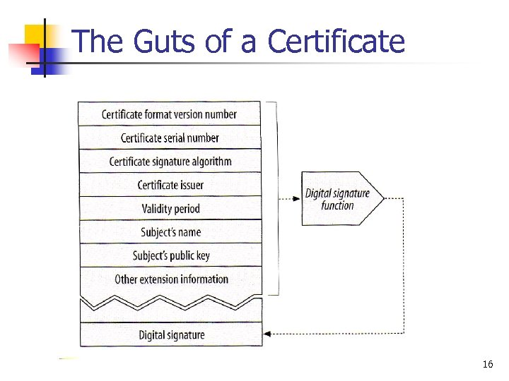 The Guts of a Certificate 16
