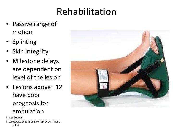 Rehabilitation • Passive range of motion • Splinting • Skin Integrity • Milestone delays