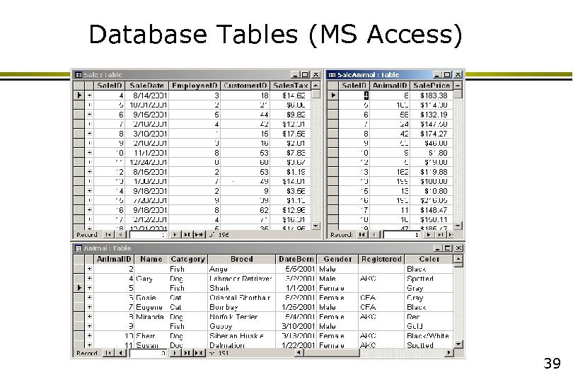 Database Tables (MS Access) 39