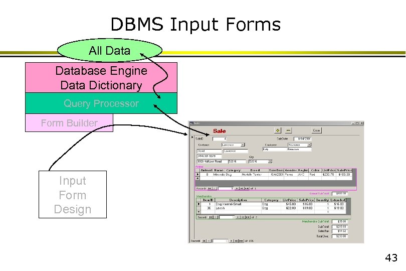 DBMS Input Forms All Database Engine Data Dictionary Query Processor Form Builder Input Form