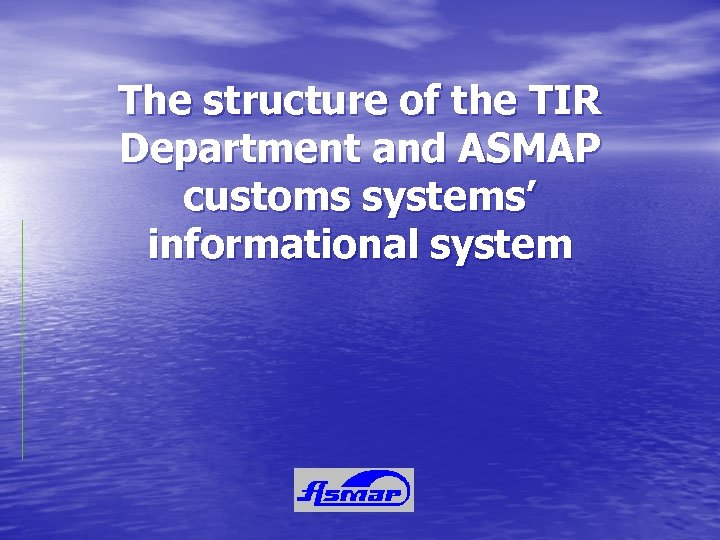 The structure of the TIR Department and ASMAP customs systems' informational system