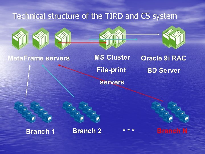 Technical structure of the TIRD and CS system MS Cluster Oracle 9 i RAC