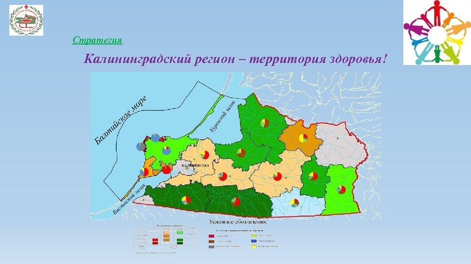 Стратегия Калининградский регион – территория здоровья!