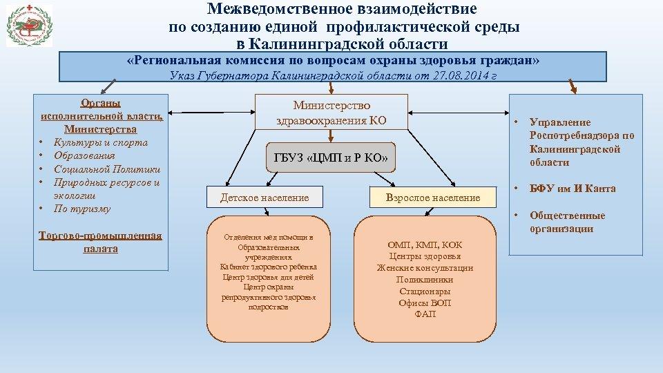 Межведомственное взаимодействие по созданию единой профилактической среды в Калининградской области «Региональная комиссия по вопросам