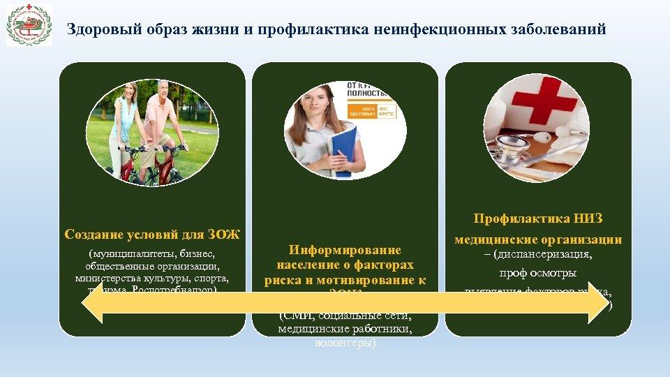 Здоровый образ жизни и профилактика неинфекционных заболеваний Профилактика НИЗ Создание условий для ЗОЖ (муниципалитеты,