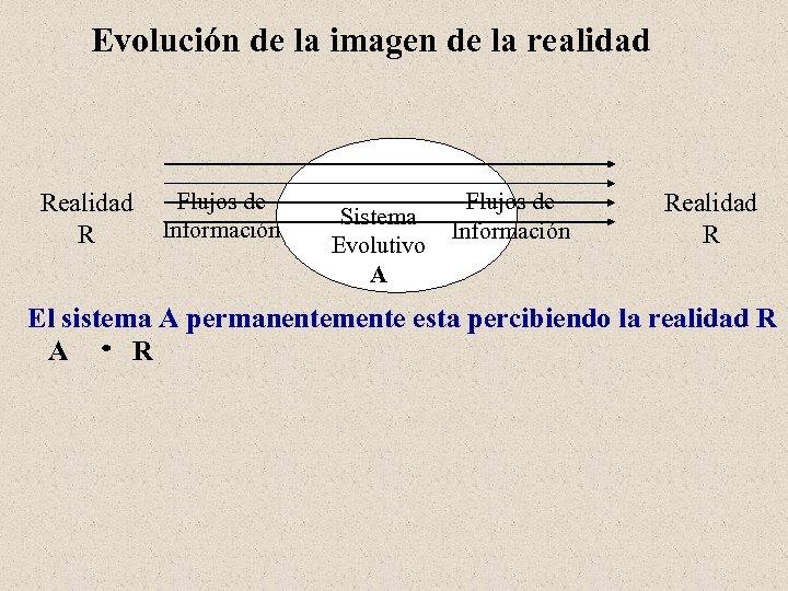 Evolución de la imagen de la realidad Realidad Flujos de Información R Sistema Evolutivo