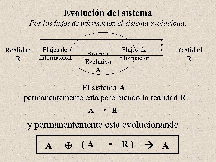 Evolución del sistema Por los flujos de información el sistema evoluciona. Realidad Flujos de