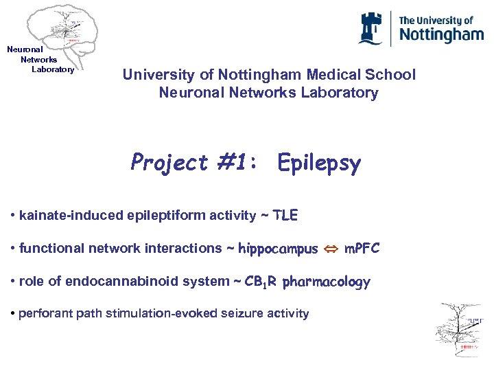 Neuronal Networks Laboratory University of Nottingham Medical School Neuronal Networks Laboratory Project #1: Epilepsy