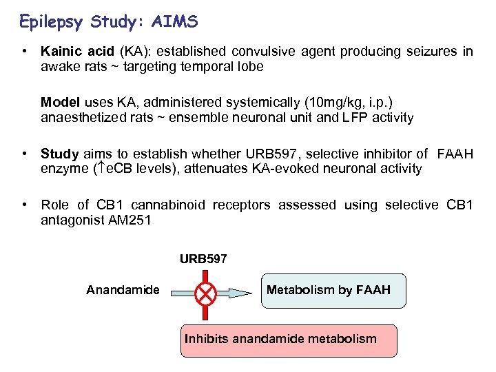 Epilepsy Study: AIMS • Kainic acid (KA): established convulsive agent producing seizures in awake