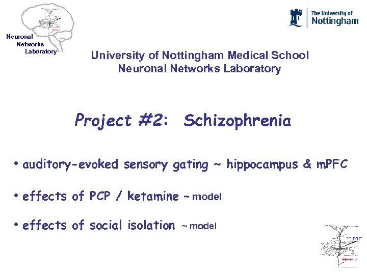 Neuronal Networks Laboratory University of Nottingham Medical School Neuronal Networks Laboratory Project #2: Schizophrenia