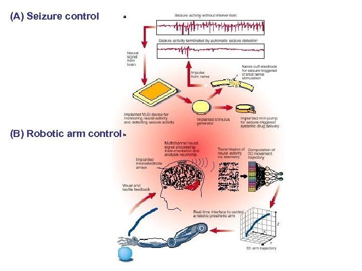 (A) Seizure control (B) Robotic arm control